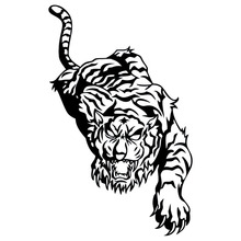23.7*38CM Domineering Tiger Graphics Car Stickers Creative Vinyl Car Door Decorative Decal Black/Silver C9-2124(China)