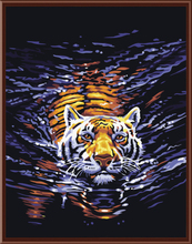 Hot Frameless Pictures Painting By Numbers DIY Digital Canvas Oil Painting Abstract Tiger Wall Art Home Decoration G158(China)