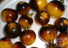 Big Sale!Vegetable seeds,VERY RARE BUMBLE BEE HEIRLOOM TOMATO! LOW ACID 50 PCS/Pack Mini fruit vegetable garden,#2WRMO1
