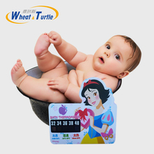 Beauty Girl Cartoon LCD Bath Thermometer Infant Bath Water Temperature Digital Thermometer,Plastic Temperature Thermometer