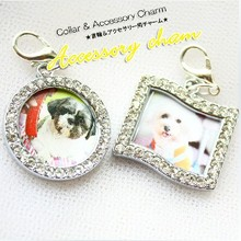 Free shipping  diamond picture photo frame pendant  dog collars necklaces pet dress up grooming accessories