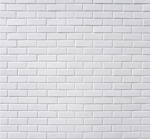 8x8ft white wall photography backdrops scenic vinyl print photo background for portrait studio photography S-1112<br>