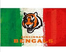 3x5ft Green white red Stripes Cincinnati Bengals flag new style oil painting style flag with 2 Metal Grommets 90x150cm(China)