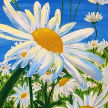 Handmade Oil Painting Field of Daisies is very alive looking to be Decorated Indoors for Living Room Decoration Flower Painting(China)