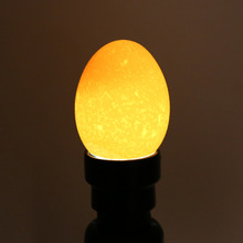 Portable Black Grow Light Cool Light LED Candling Lamp Incubator Super Bright Egg Candler Tester Light