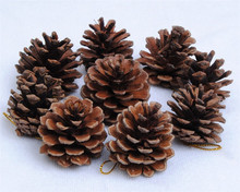 Christmas Tree Hanging Balls Pine Cones Pinecone Xmas New Year Holiday Party Decoration Ornament For Home Parties Supplies