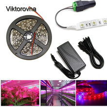 1M 2M 3M 4M 5M LED Grow Lights DC12V Growing LED Strip Plant Growth Light Set + power Adapter + LED Plant grow light