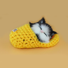 Baby Cute Simulation Sounding Shoe Kittens Cats Plush Kids Toys for Children Appease Christmas Birthday Decor Dolls Game Gifts