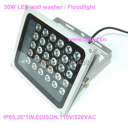 Waterproof,good quality,high power 30W LED projector spotlight,LED floodlight,Aluminum fitting,DS-TN-05B-30W,110V/220VAC.<br><br>Aliexpress