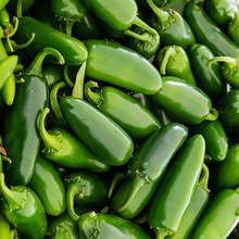 Free Shipping 100 Jalapeno Chile Pepper seeds Fast Growing DIY Home Garden Vegetable Plant, most popular pepper(China)