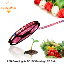 LED Plant Grow Lights 5050 LED Strip DC12V Red Blue 3:1 4:1 5:1 for Greenhouse Hydroponic Plant Growing 5m/lot