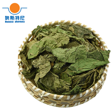 free shipping organic Chinese herb tea dried folium mori tea&Mulberry Leaf tea(China)