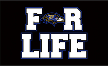 3x5ft cheap polyester Baltimore Ravens for life with purple outline flag with 2 metal grommets(China)
