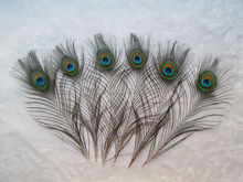 100Pieces/lot!Small eye Peacock tail feathers 25 to 30cm in  length,cheap peacock feathers,cheap feathers,freeshipping