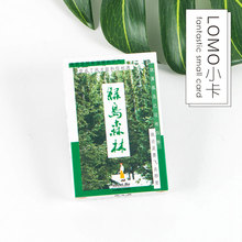 "28 pcs/box Infeel.me ""Green bird forest"" beautiful scenery creative lomo small cards message card postcard holiday universal"