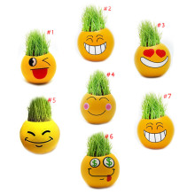Cute Emoji Expression Mini Bonsai DIY Grass Hair Desk Plant Pot Home Decoration J2Y