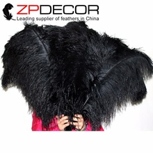 ZPDECOR 100 pcs/lot 65-70cm(26-28inch)Premium Quality Bulk Long Beautiful Black Ostrich Drab Dyed Feathers for Carniva Decor(China)