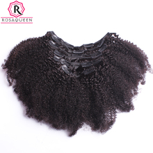 Afro Kinky Curly Clip In Human Hair Extensions 4B 4C African American Human Natural Hair Clip Ins Rosa Queen Remy(China)
