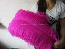 "Wholesale Hard rod 100pcs/lot Rose Ostrich Feathers 65-70cm /26-28"" Wedding Christmas Decorations Cosplay DIY(China)"