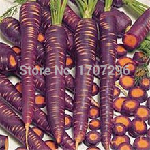 Purple carrot seeds imported anti-aging anti-cancer purple ginseng tablets - 30 pcs / lot