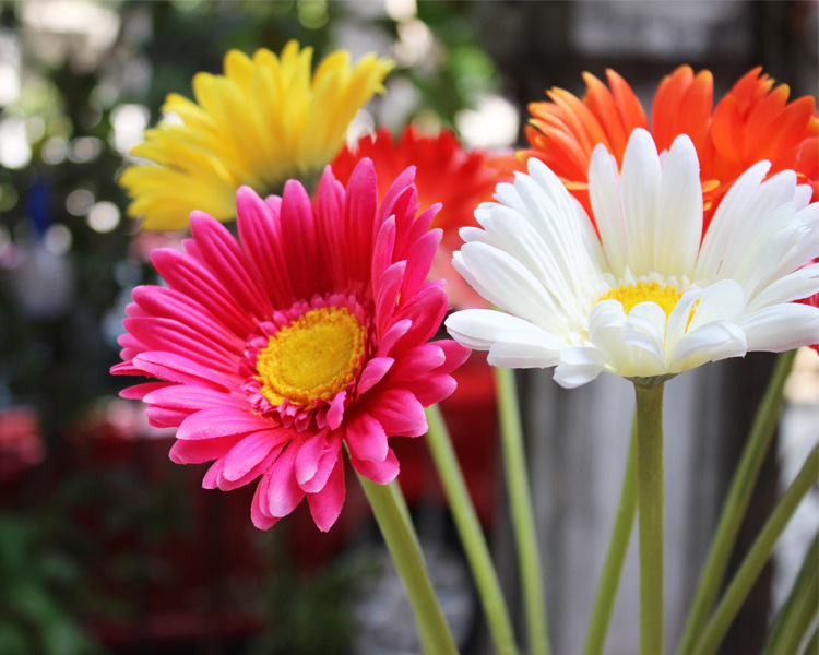 Free Shipping(10pcs/Lot) Fresh Gerbera Artificial Flowers Real Touch daisy Flowers for Home Decoration Wedding Party & Birthday(China (Mainland))