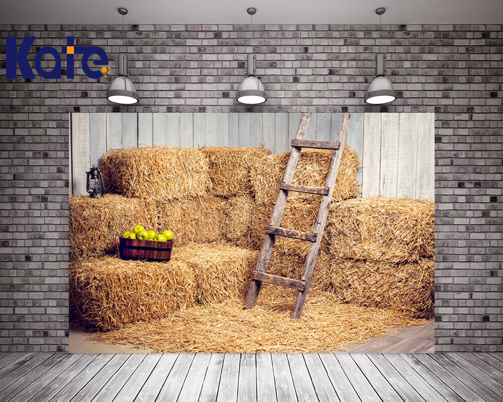 Kate Village 10x20ft  Photography Backdrop Straw Pile Ladder Studio Fotografico For Children Party Photo Studio With Apple <br>