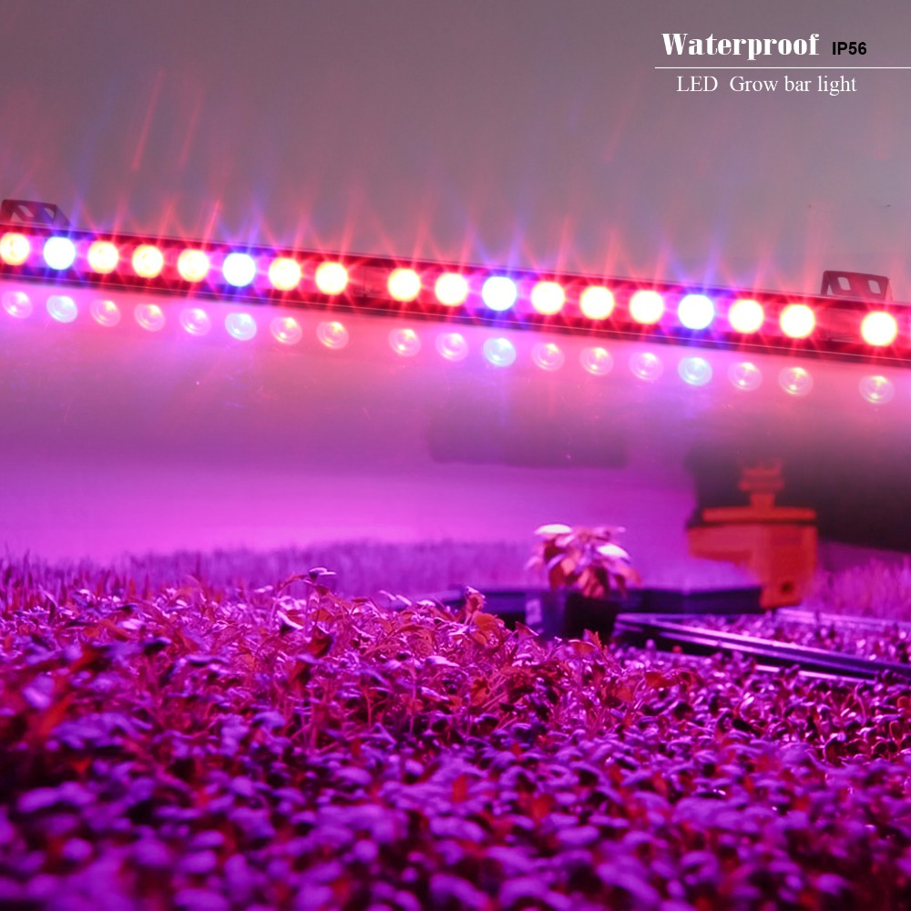 10pcs/lot 54w Waterproof LED Bar Grow Light Red+Blue Indoor Plant Lamp Veg Flower Strip Lamp Hydroponic Lighting Factory Price<br><br>Aliexpress