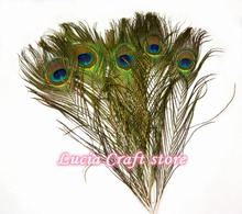 Lucia crafts 25-30cm Natural Peacock Eye Tail feathers DIY hair wedding party home decoration 5pcs/lot 077047