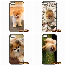 Micro Teacup Pomeranian Puppy Cute Mobile Phone Case Cover For iPhone 4 4S 5 5C SE 6 6S 7 Plus Galaxy J5 A5 A3 S5 S7 S6 Edge