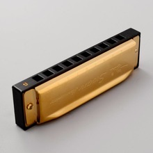 Golden 10 Holes Swan Harmonica Blues G Key With Case Music Learner Lover Kids Gift Higher Quality