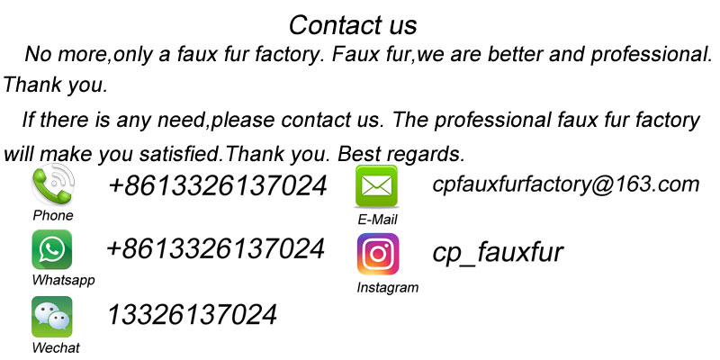 cp contact us