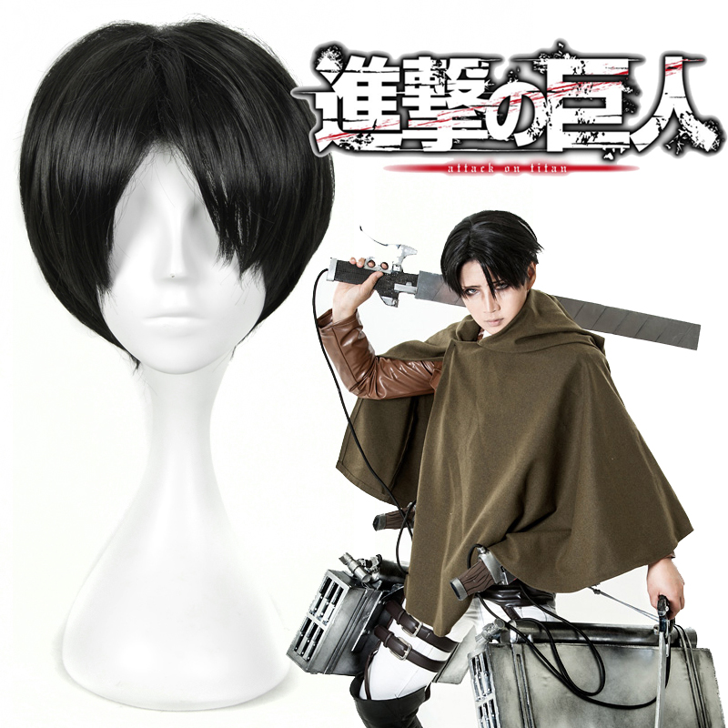 New Short Synthetic Hair Wigs Attack On Titan Anime Cosplay Wigs + Wig Cap Free Shipping<br><br>Aliexpress