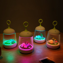 HGhomeart Color Night Light Led Energy Saving Lamp DIY Potted Light Warm and Lovely Colorful Lights(China)
