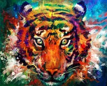 Modern Abstract Color Animal Tiger Oil Painting HD Printed Art Decoration On Canvas With Framework Hang on the Wall