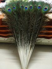 "good! Free shipping wholesale 50 pcs / lot high-quality Naturally peacock feathers, 70-80cm / 28-32 ""DIY jewelry decoration"