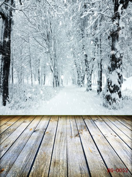 Free shipping 10x 20ft vinyl wedding photo backgrounds,Nature scenic forest snow tree winter backdrop photography  christmas <br><br>Aliexpress