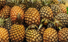 New pineapple Seeds!!! 100PCS / bag Dwarf pineapple seeds, sweet juicy delicious fruit seeds, Rare Bonsai Plant free delivery
