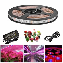 LED Grow Lights Full Spectrum lamp plant grow light strip 3 red 1 blue or 8 red 1 blue hydroponic apollo phyto lamp led grows(China)