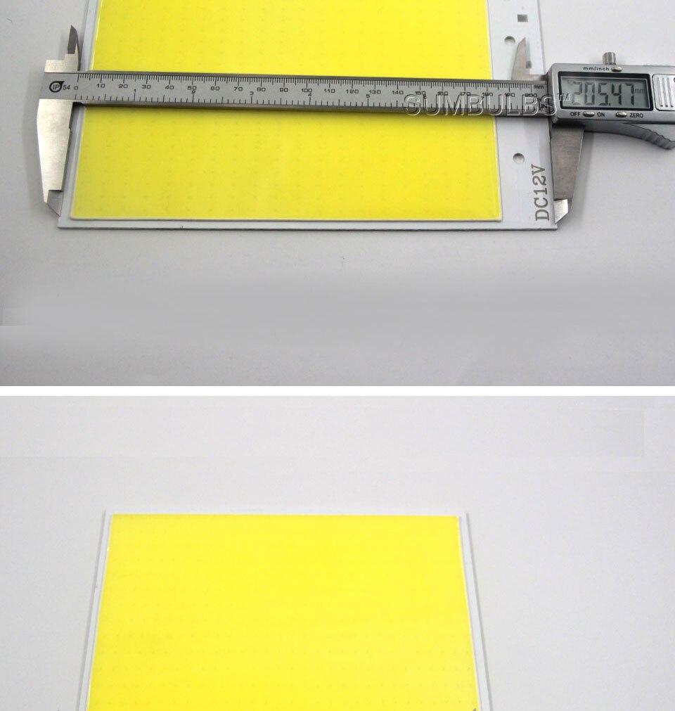 12v 300w COB LED LIGHT LAMP BULB board led lighting (5)