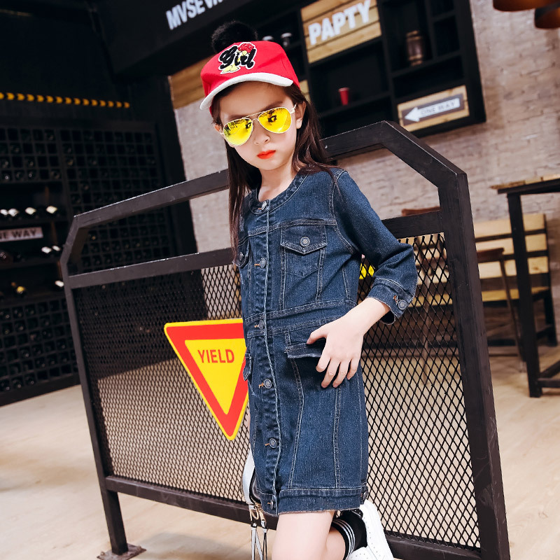Autumn Garment Pattern Cowboy Round Neck Long Sleeve Dress Spring And Autumn Season Children Kids Clothing<br>