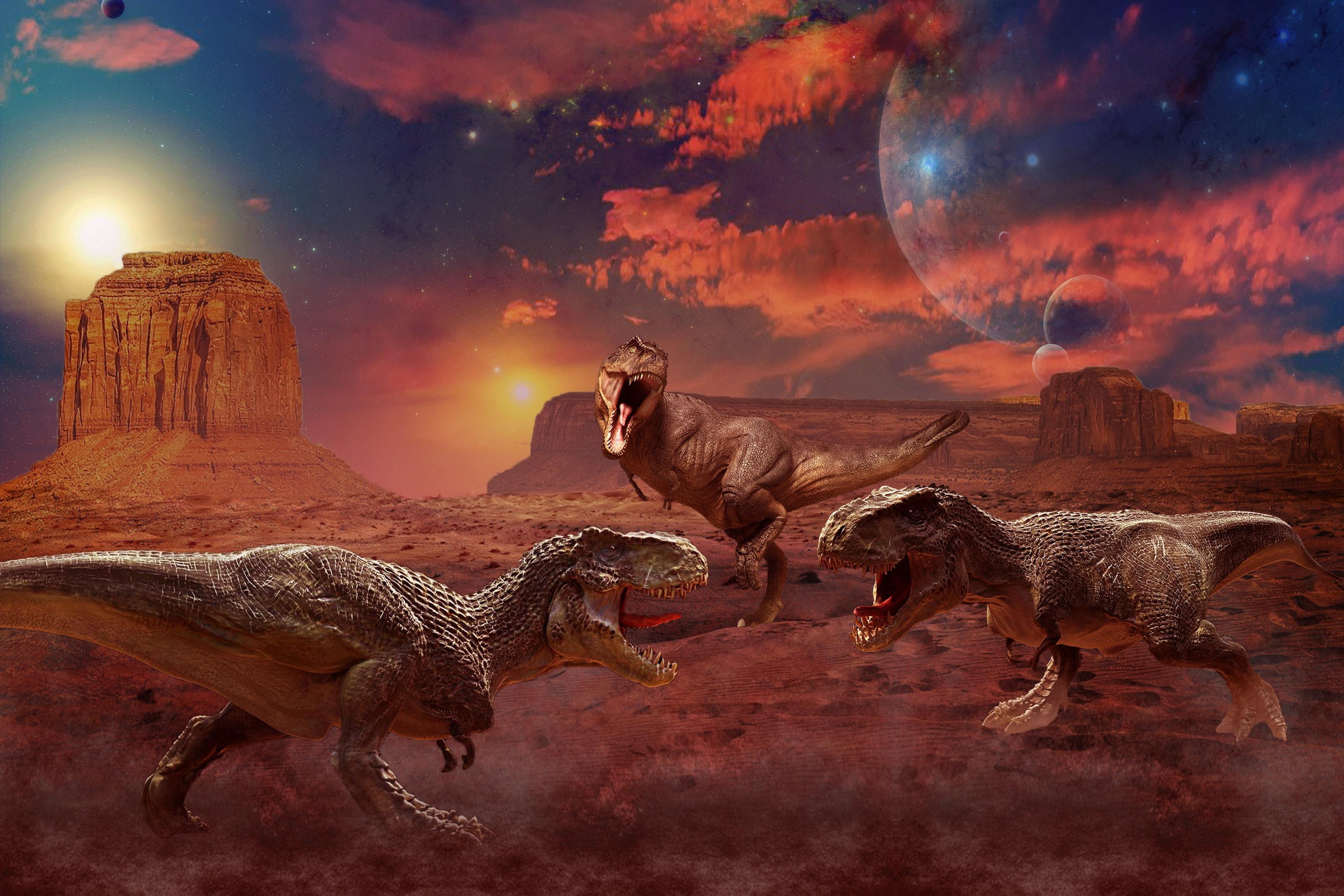 ティラノサウルス同士の戦い