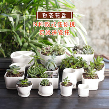 ceramic White Flowering garden pots Potted Flowers Seeds Lisianthus for FLOWER pot Desktop Mini Ornaments with porcelain tray(China)