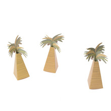 12pcs Rustic Wedding Favor Box Coconut Palm Tree Baby Shower Favor Box Wedding Accessories Favors and Gifts(China)