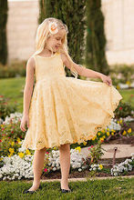 Elegant Kids Baby Girls clothes Princess Party Dress Lace Sleeveless Summer Dress 2-11Y Big Discount