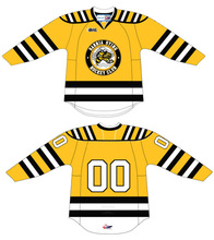 Sarnia Sting # Custom your name and number Stitched Hockey Jersey