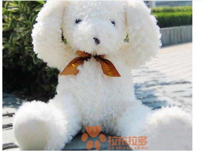 stuffed animal lovely Shy bear plush toy 50 cm white bear doll 19 inch toy s4654<br><br>Aliexpress
