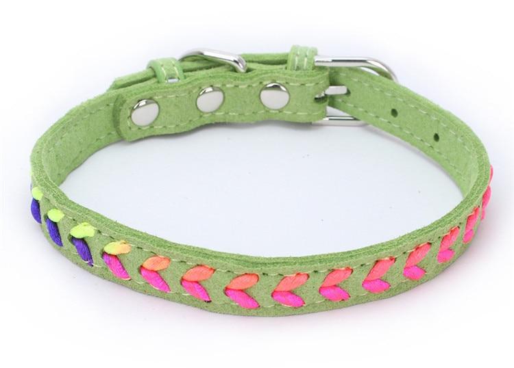 dogs collar (7)