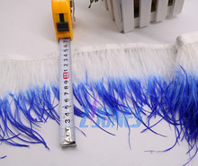 10meters High Quality Real Ostrich Feather Trims For Skirt/Dress/Costume Double Color Feather Trimming Wholesale(China)