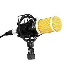 Neewer NW-8000 Professional Studio Recording Microphone Set,Including:Microphone,Shock Mount, Anti-wind Foam Cap,LR Cable (Gold)(China)