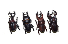 Lot of 4 Yujin Insect Allomyrina Beetle Bug Toy Loose Action Figure Model Set